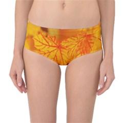 Bright Yellow Autumn Leaves Mid Waist Bikini Bottoms