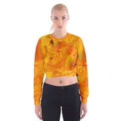 Bright Yellow Autumn Leaves Women s Cropped Sweatshirt