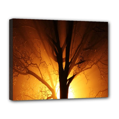 Rays Of Light Tree In Fog At Night Canvas 14  X 11