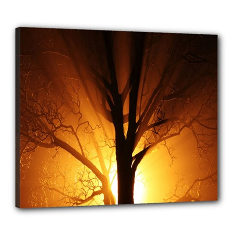 Rays Of Light Tree In Fog At Night Canvas 24  X 20