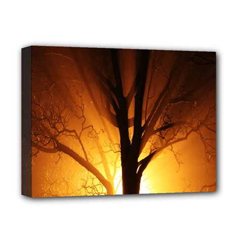 Rays Of Light Tree In Fog At Night Deluxe Canvas 16  X 12