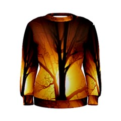 Rays Of Light Tree In Fog At Night Women s Sweatshirt