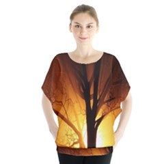 Rays Of Light Tree In Fog At Night Blouse