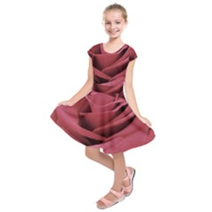 Image Kids  Short Sleeve Dress