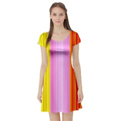 Multi Colored Bright Stripes Striped Background Wallpaper Short Sleeve Skater Dress