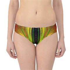 Future Abstract Desktop Wallpaper Hipster Bikini Bottoms
