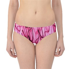 An Unusual Background Photo Of Black Swirls On Pink And Magenta Hipster Bikini Bottoms