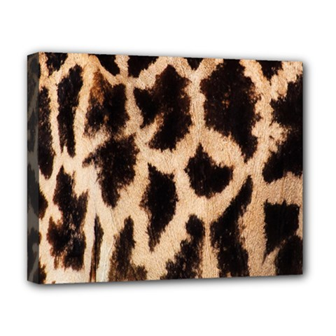 Yellow And Brown Spots On Giraffe Skin Texture Deluxe Canvas 20  X 16