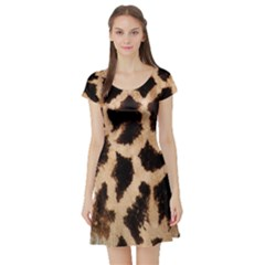 Yellow And Brown Spots On Giraffe Skin Texture Short Sleeve Skater Dress