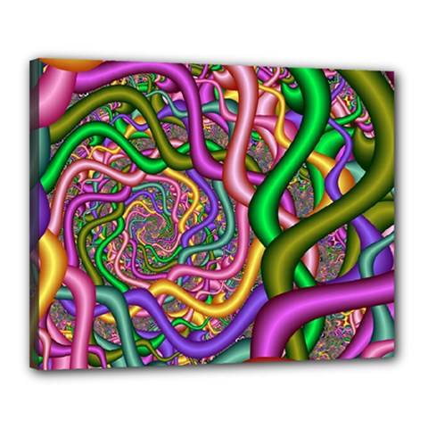 Fractal Background With Tangled Color Hoses Canvas 20  X 16