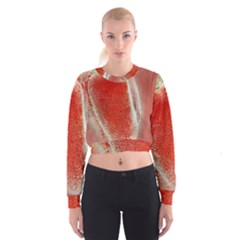 Red Pepper And Bubbles Women s Cropped Sweatshirt