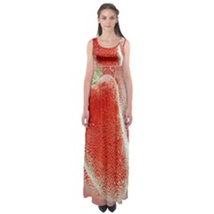 Red Pepper And Bubbles Empire Waist Maxi Dress