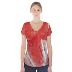 Red Pepper And Bubbles Short Sleeve Front Detail Top