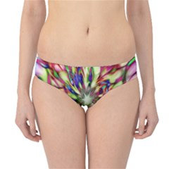 Magic Fractal Flower Multicolored Hipster Bikini Bottoms
