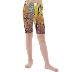 Summer Sun Set Fractal Forest Background Kids  Mid Length Swim Shorts