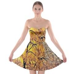 Summer Sun Set Fractal Forest Background Strapless Bra Top Dress
