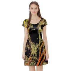 Artistic Effect Fractal Forest Background Short Sleeve Skater Dress