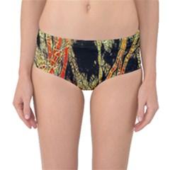 Artistic Effect Fractal Forest Background Mid Waist Bikini Bottoms