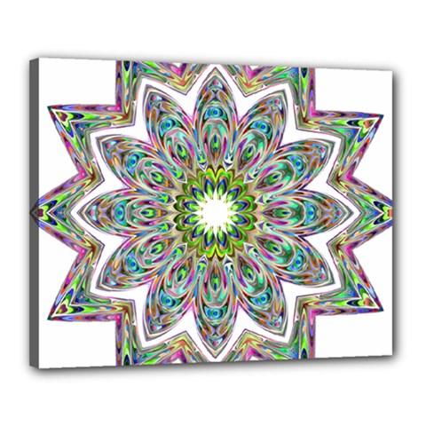 Decorative Ornamental Design Canvas 20  X 16