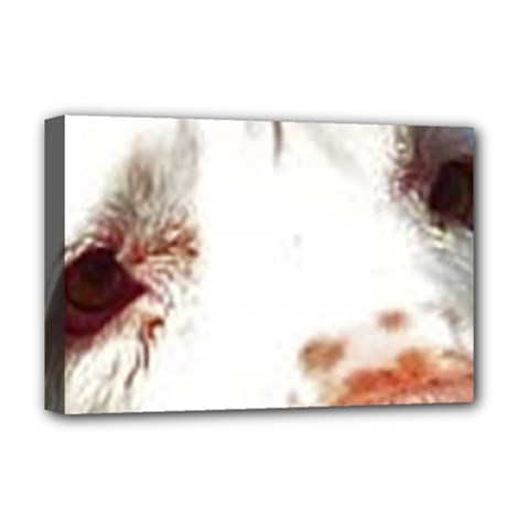 Clumber Spaniel Eyes Deluxe Canvas 18  x 12