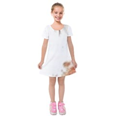 Spotted pattern Kids  Short Sleeve Velvet Dress