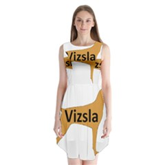 Vizsla Name Silo Color Sleeveless Chiffon Dress