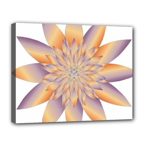 Chromatic Flower Gold Star Floral Canvas 14  x 11
