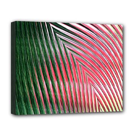 Watermelon Dream Deluxe Canvas 20  x 16