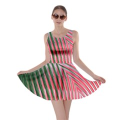 Watermelon Dream Skater Dress