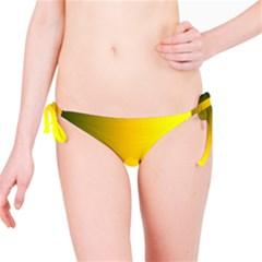 Yellow Gradient Background Bikini Bottom
