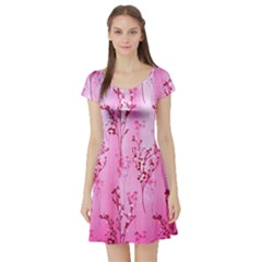 Pink Curtains Background Short Sleeve Skater Dress