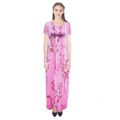 Pink Curtains Background Short Sleeve Maxi Dress