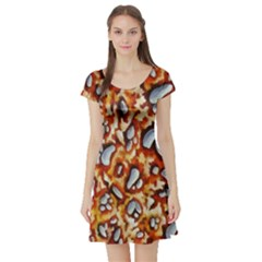 Pebble Painting Short Sleeve Skater Dress