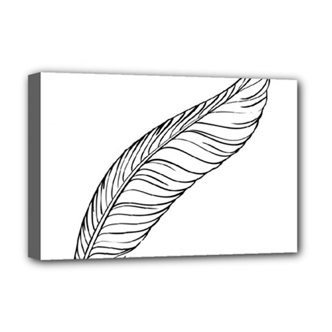 Feather Line Art Deluxe Canvas 18  x 12