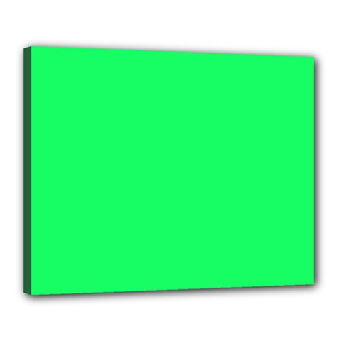 Lanai Lime Green - Acid Green Canvas 20  x 16