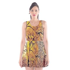 Summer Sun Set Fractal Forest Background Scoop Neck Skater Dress