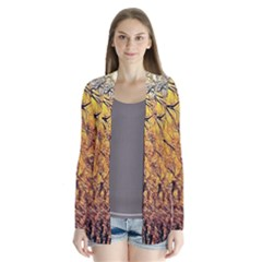 Summer Sun Set Fractal Forest Background Cardigans