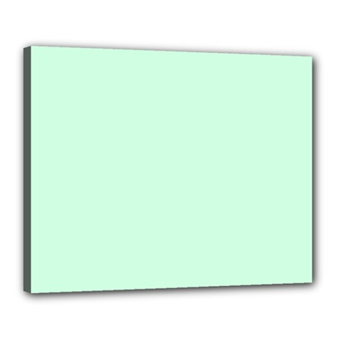 Pale Green Summermint Pastel Green Mint Canvas 20  x 16