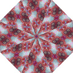 Floral Flower Wallpaper Created From Coloring Book Colorful Background Straight Umbrellas