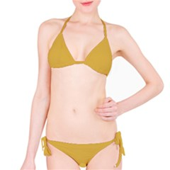 Designer Fall 2016 Color Trends-Spicy Mustard Yellow Bikini Set