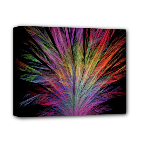 Fractal In Many Different Colours Deluxe Canvas 14  x 11