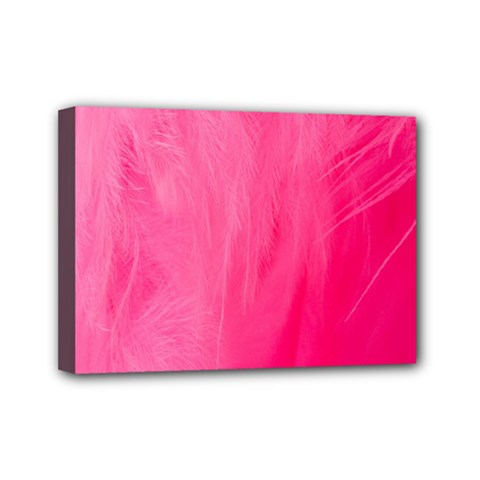 Very Pink Feather Mini Canvas 7  X 5