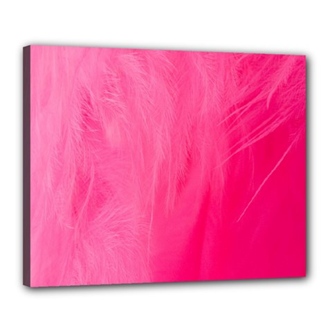 Very Pink Feather Canvas 20  X 16