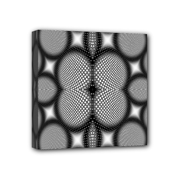 Mirror Of Black And White Fractal Texture Mini Canvas 4  x 4