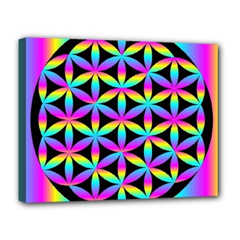 Flower Of Life Gradient Fill Black Circle Plain Canvas 14  x 11