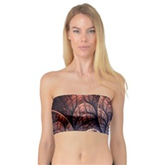 Abstract Fractal Bandeau Top