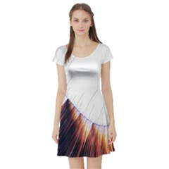 Abstract Lines Short Sleeve Skater Dress