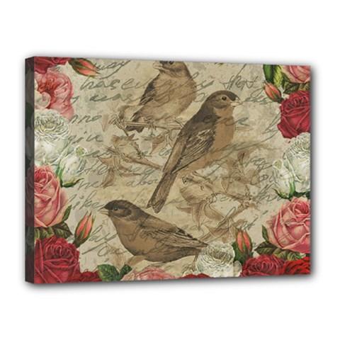 Vintage birds Canvas 16  x 12