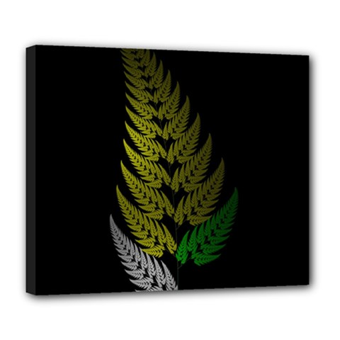 Drawing Of A Fractal Fern On Black Deluxe Canvas 24  x 20
