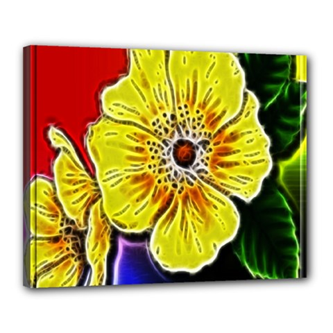 Beautiful Fractal Flower In 3d Glass Frame Canvas 20  X 16